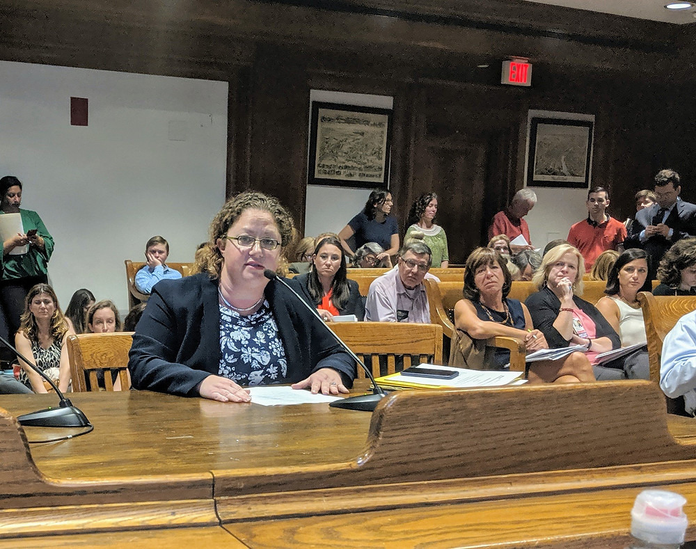Senator Becca Rausch testifying in support of the Pregnant Persons' Health Act
