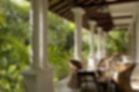 Pooja Kanda - Lower veranda garden.jpg