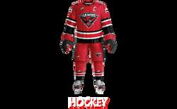 carousel-hockey-01