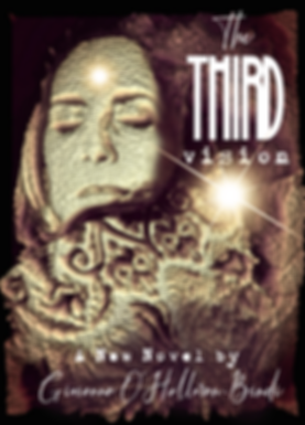 The Third vision Cover 1.png