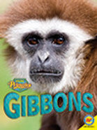 A2 V2 Book: Gibbons
