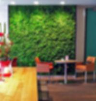 Озеленение кафе в Москве