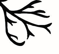 BurgundyBearGuitars_logo_retouch__01_v2a