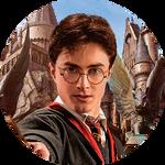 Гарри Поттер.png