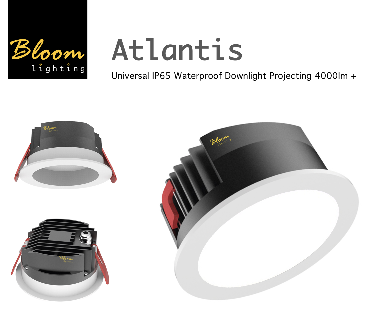Bloom Atlantis