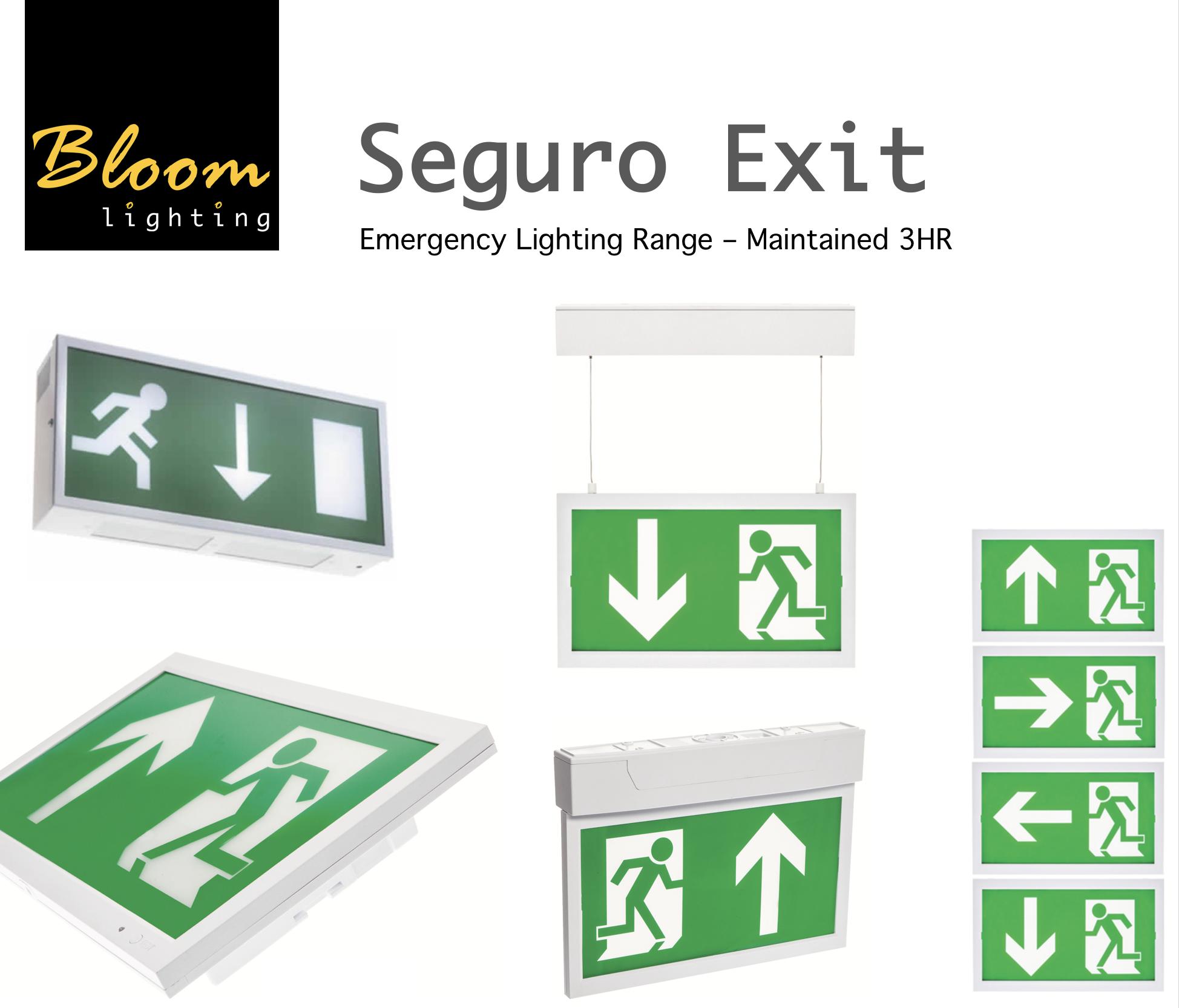 Bloom Seguro Exit