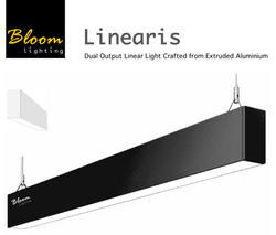 Bloom Linearis