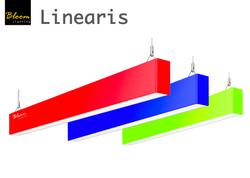 Bloom Linearis Colours