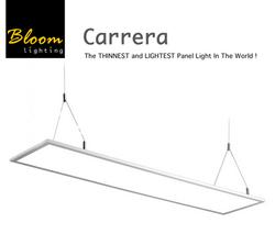 Bloom Carrera