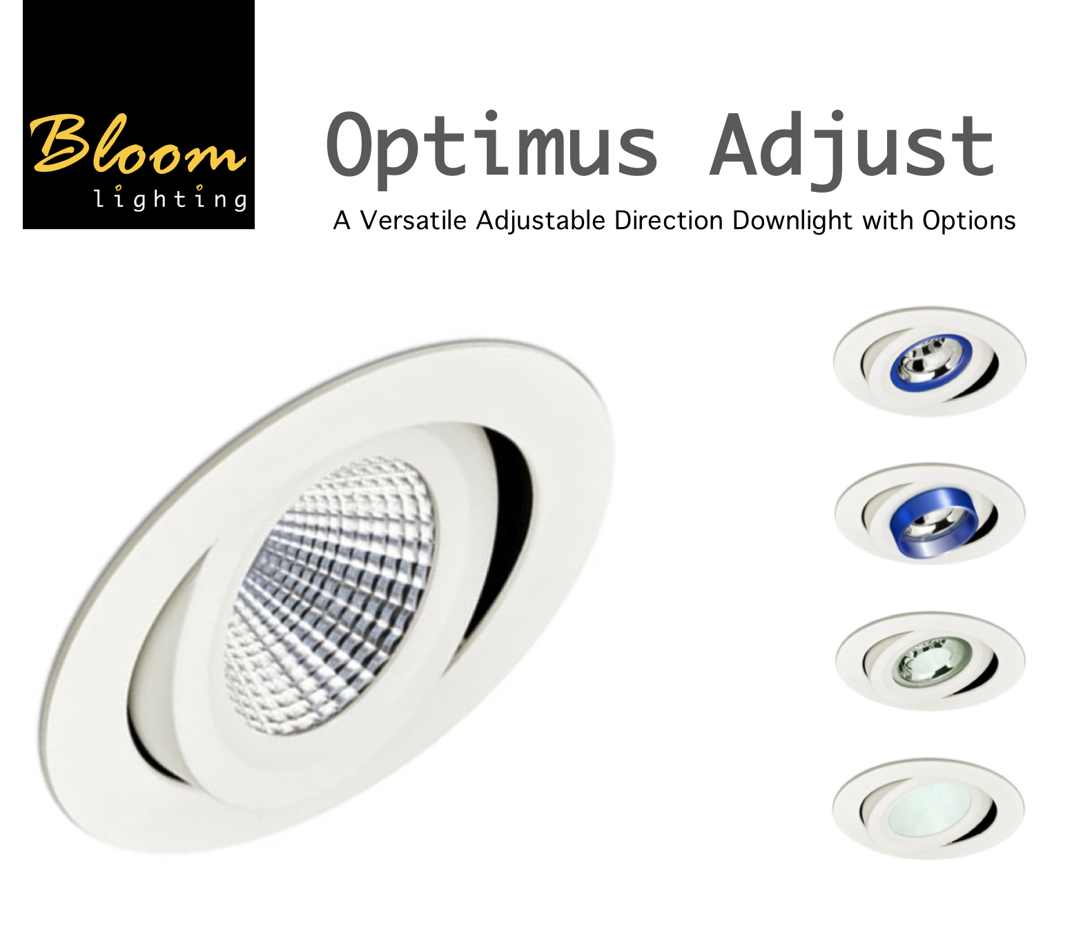 Bloom Optimus Adjustable