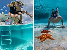 Cozumel Snorkeling Reef El Cielo Tours Excursions