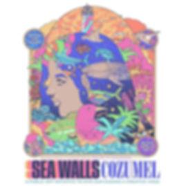 Cozumel Sea Wall Art Tours
