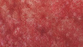シリーズ「芽の眼」No.5        佐野実咲 Red Detail