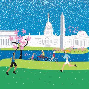 Spring in Washington, DC Poster