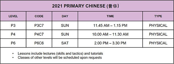 Primary 2021_Chinese.jpg