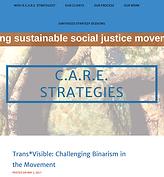 Care Strategies