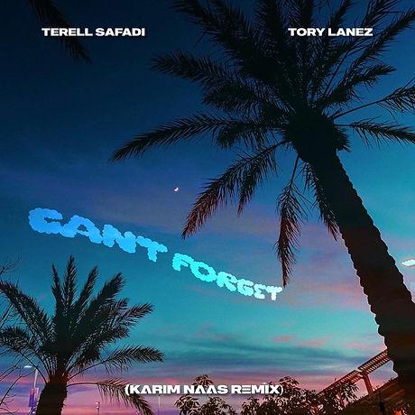 Terell Safadi - Can't Forget (Karim Naas