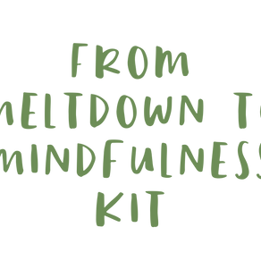 73. Intro of: from Meltdown to Mindfulness  kit