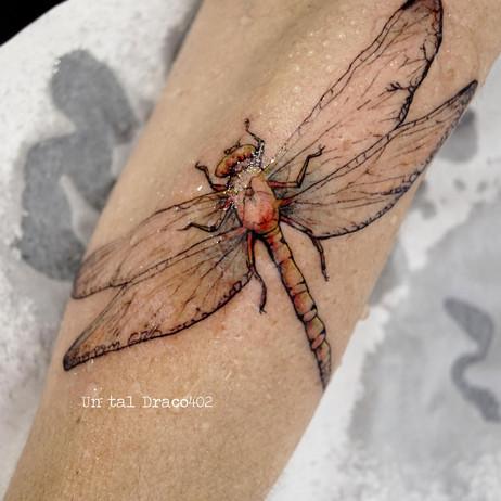 Tatuaje realista de libélula