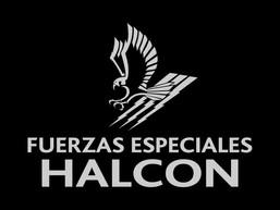 Asesoramiento - Curso de Snipers de Fuerzas Federales en la División Especial de Seguridad Halcón de
