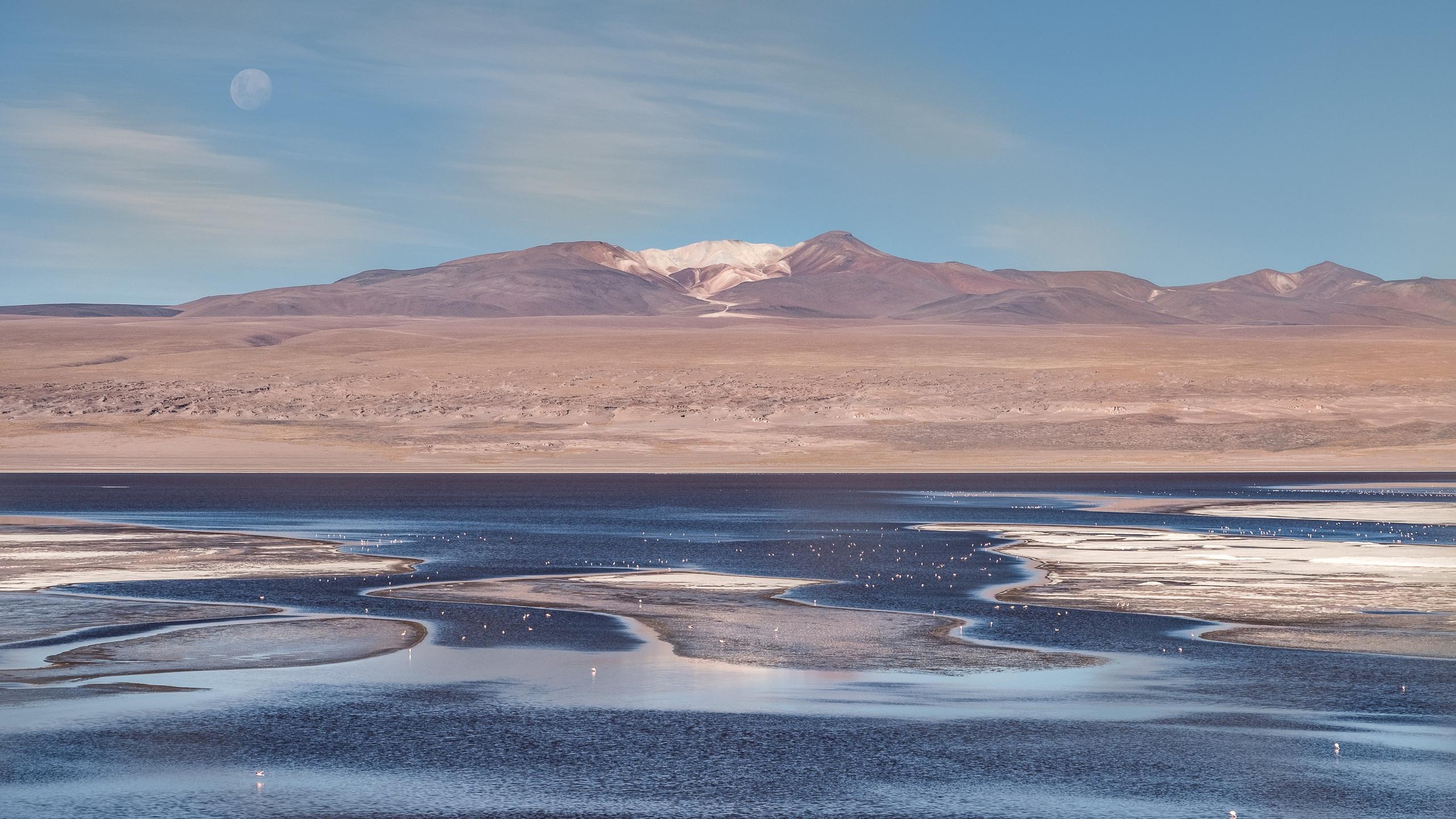 Laguna Colorada, Potosi Province, Bolivia