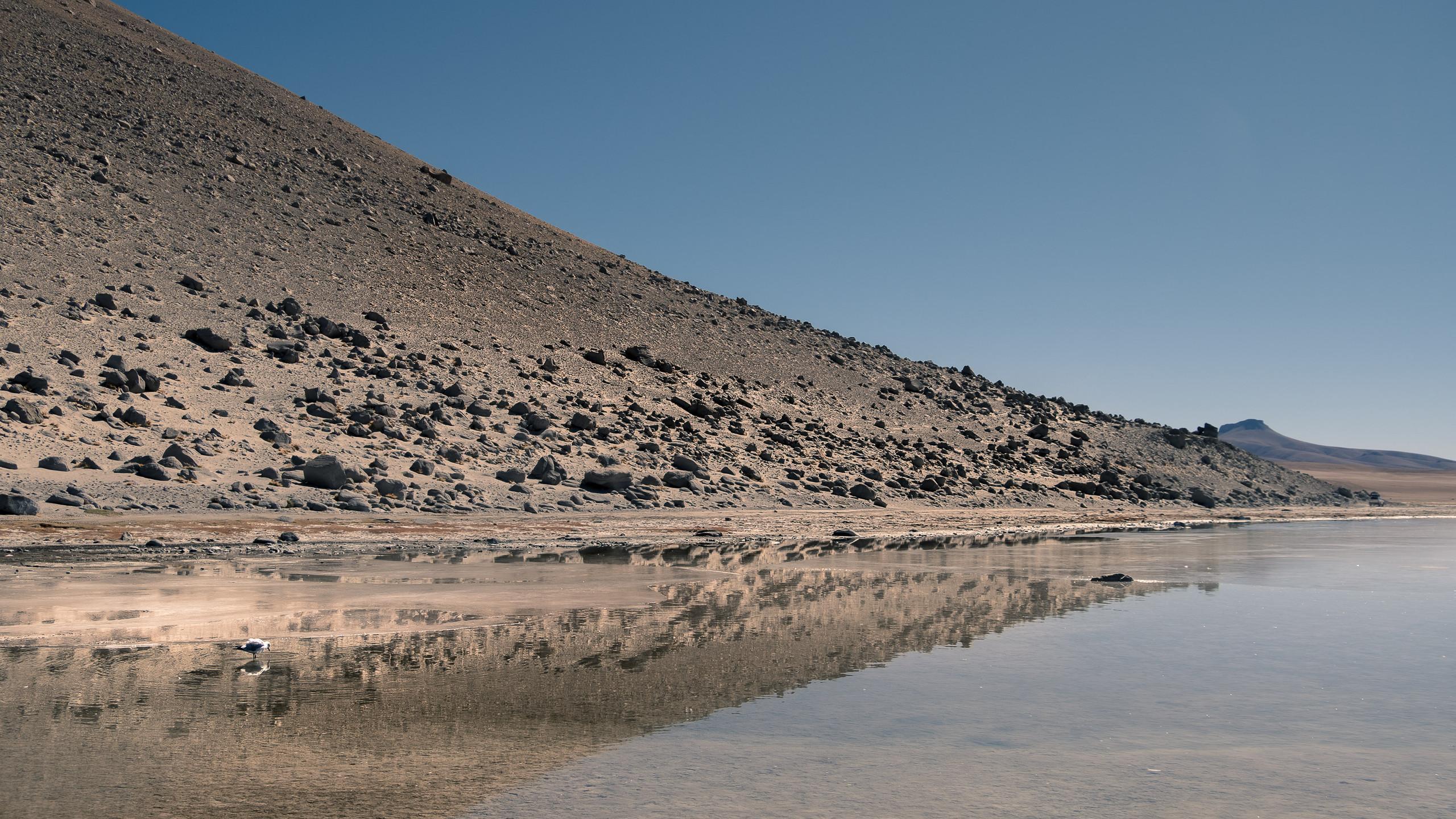 Laguna Hedionda, Potosi Province, Bolivia
