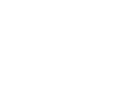 logo liptoventure web logo.png