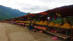 clementine  shop