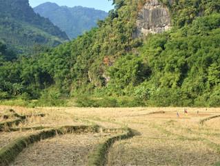 Sous le charme du Laos