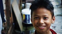 portrait d'un petit birman