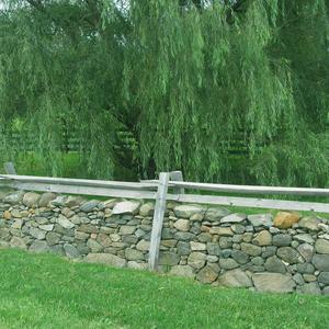 Salem-Farm-Walls-Fauquier-County.jpg