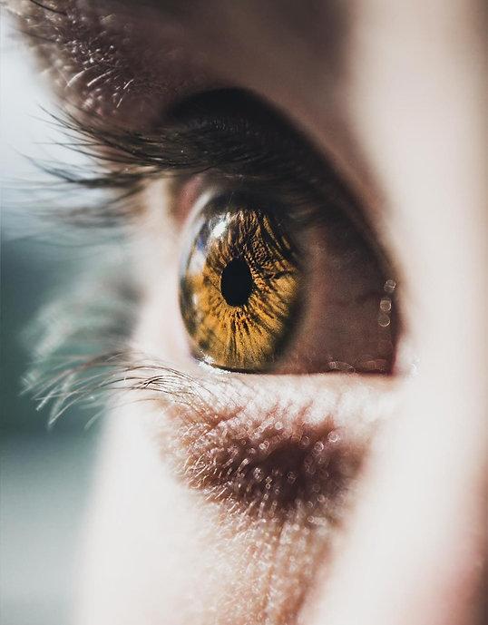 visão.jpg