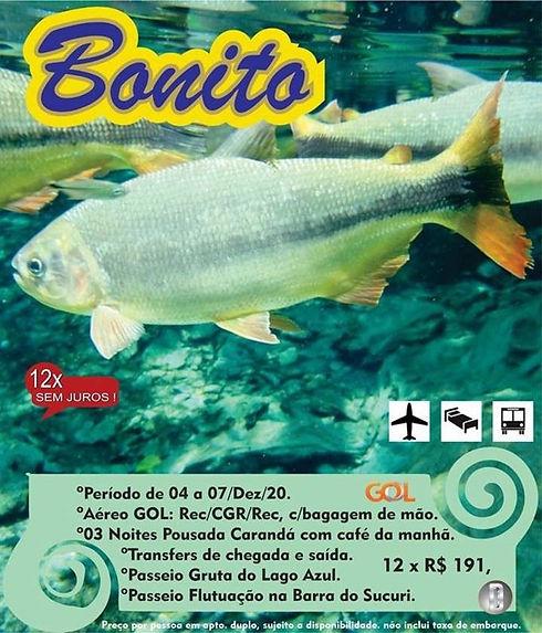 BONITO.jpg