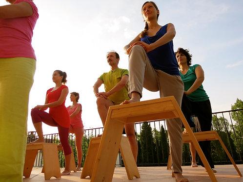 Périnée et Mouvement en VISIO, 6 cours individuels
