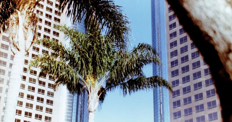 Urban Oasis [Kodak Colorplus 200 on Niko