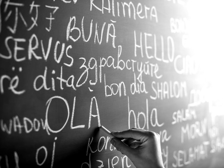 The importance of using human translators in your business