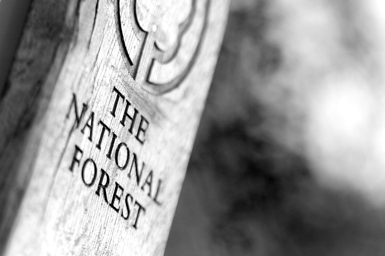 National Forest location sign
