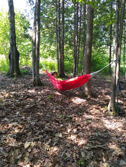 Take a rest in the hammock