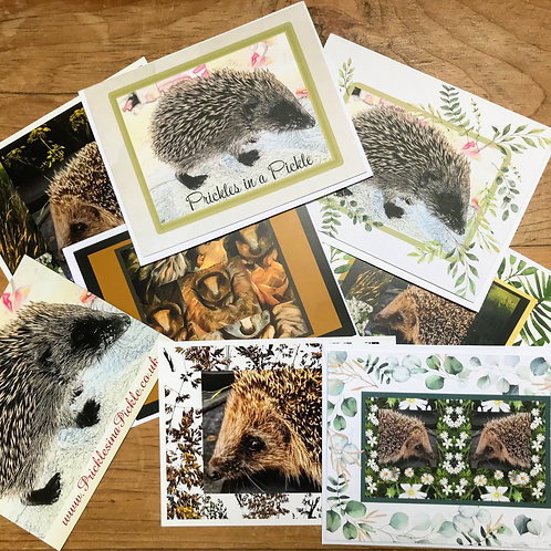 Prickles in a Pickle Charity Card Pack