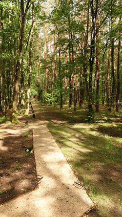 Chemin d'accès Nahélé