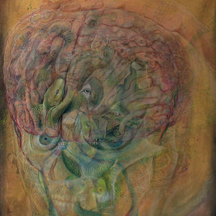 Inheritance (of the triurnal mind) detai