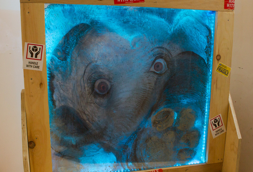 elephant in the room7.jpg
