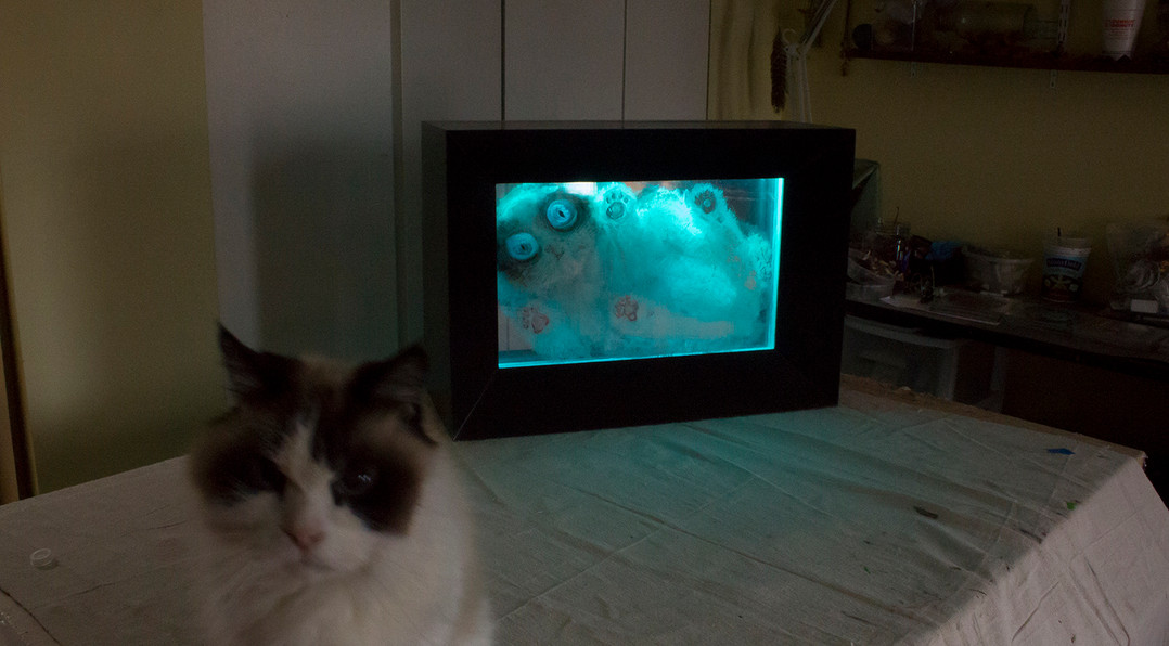 """Based on the famous thought experiment, """"Schrodinger's Cat"""" questions the nature of reality. Quantum physics tells us that reality is a set of potentials, that exist in a fluid state (the cat is both alive AND dead.) It's  the observer who determines which potential state comes into reality (cat is alive OR dead). In its humorous way this work addresses the fluid nature of reality, and asks us to consider how many multiple versions of reality there are.   Created using layers of recycled plexiglass, paint and arduino micro chips, Schrodingers Cat slowly changes from its """"alive"""" state to its """"dead"""" state in an endless loop."""