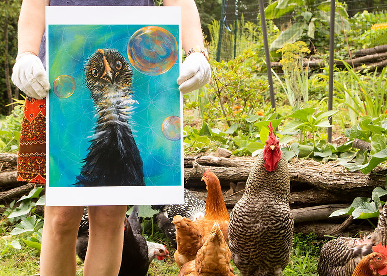 Disbelief print with chickens.jpg