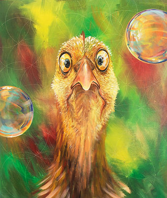 Funny Chicken Painting