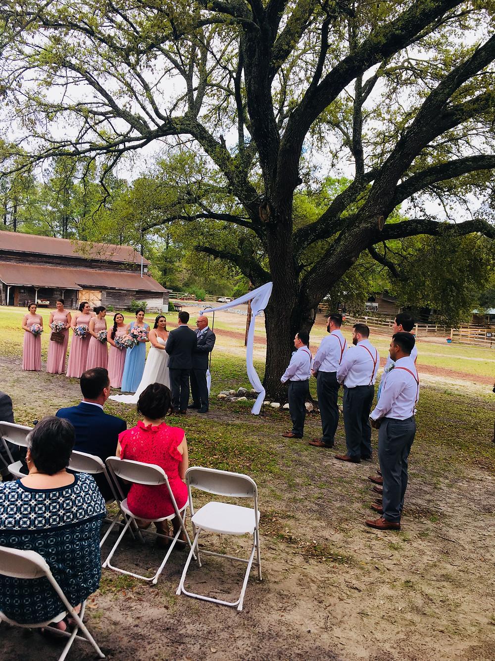 Wedding Ceremony, Bride and Groom Saying Wedding Vows