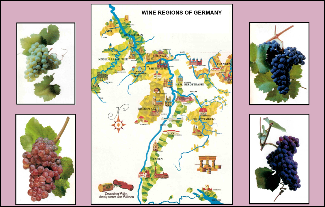 80_WINE REGIONS MAP.png