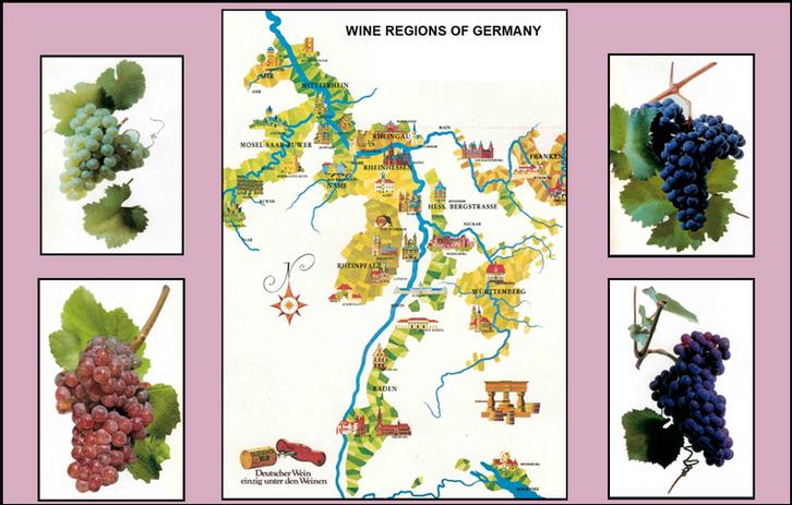 80_WINE REGIONS MAP.png