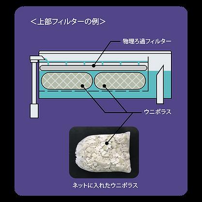 バイオろ過フィルター uniporous ウニポラス ウニ殻ろ過材 上部フィルター