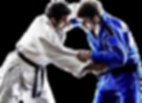Brazilian Jiu Jitsu Throw Judo